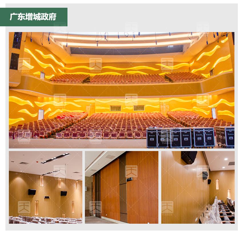 广东增城政府阻燃槽木吸音板工程案例