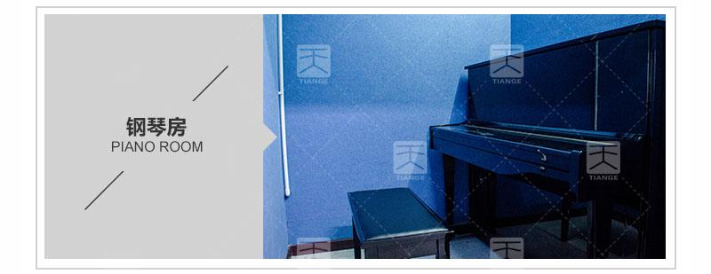 琴房环保聚酯纤维吸音板工程案例