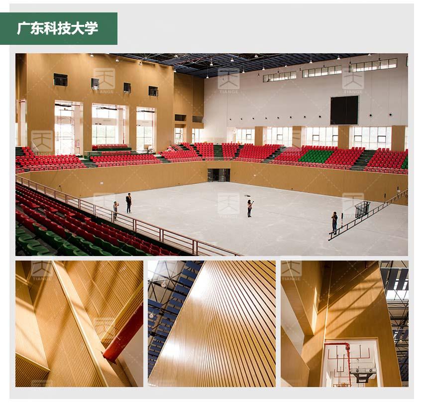 阻燃槽木吸音板体育馆工程案例