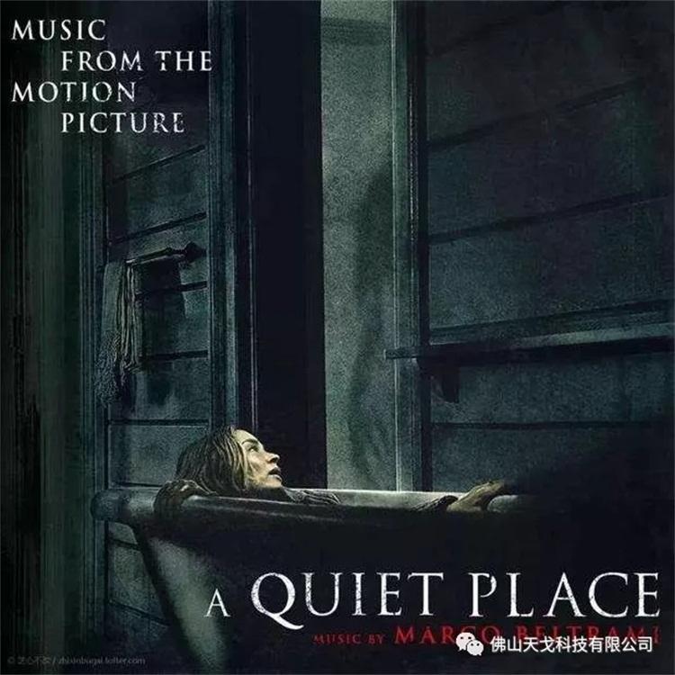 《寂静之地》