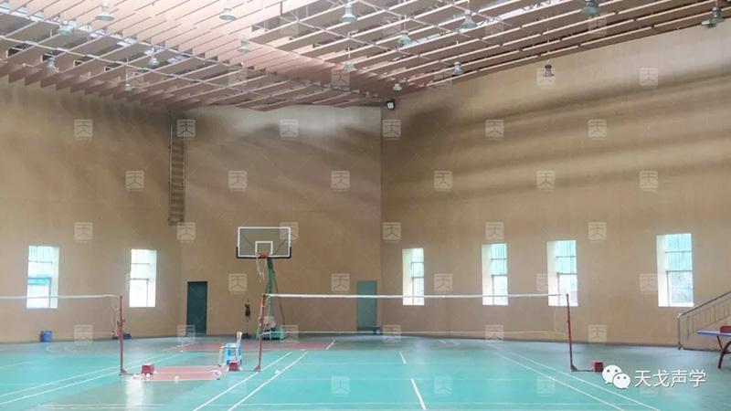 广东东莞新民小学体育馆墙面
