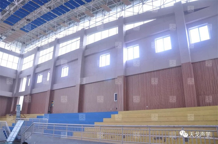 山东诸城第一中学体育馆