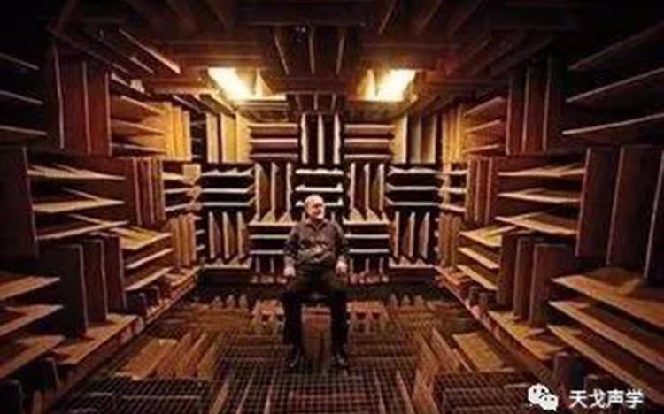 太安静也令人疯狂,探秘无声密室