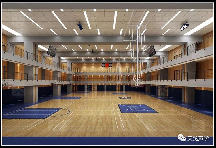 佛山国际体育文化演艺中心训练馆
