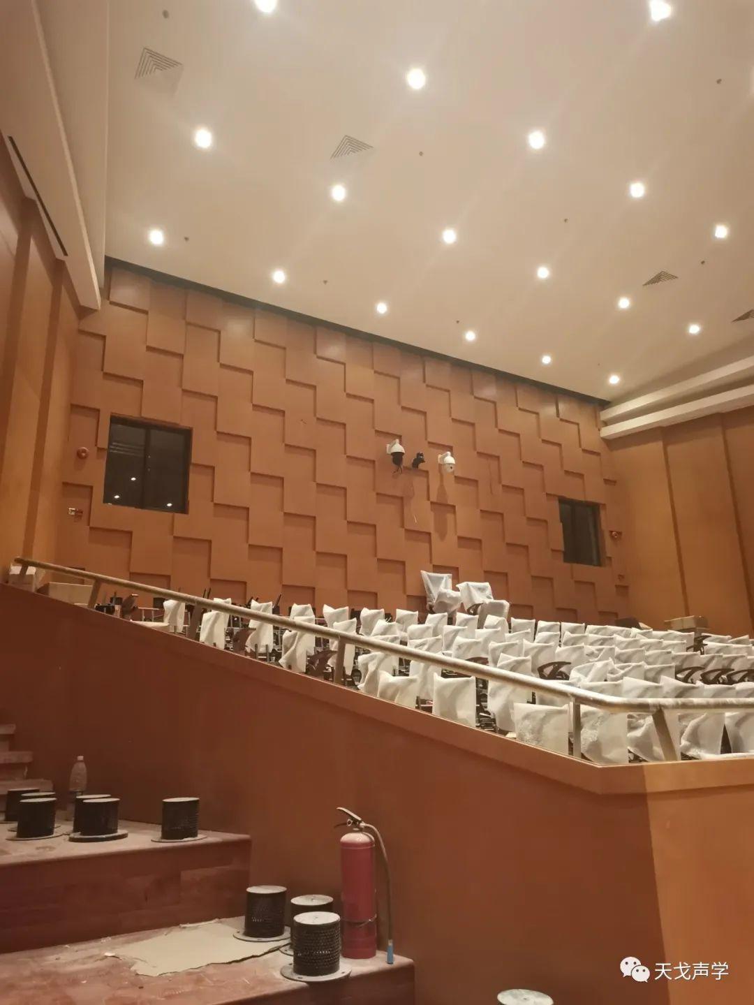 广东深圳大剧院声学设计工程