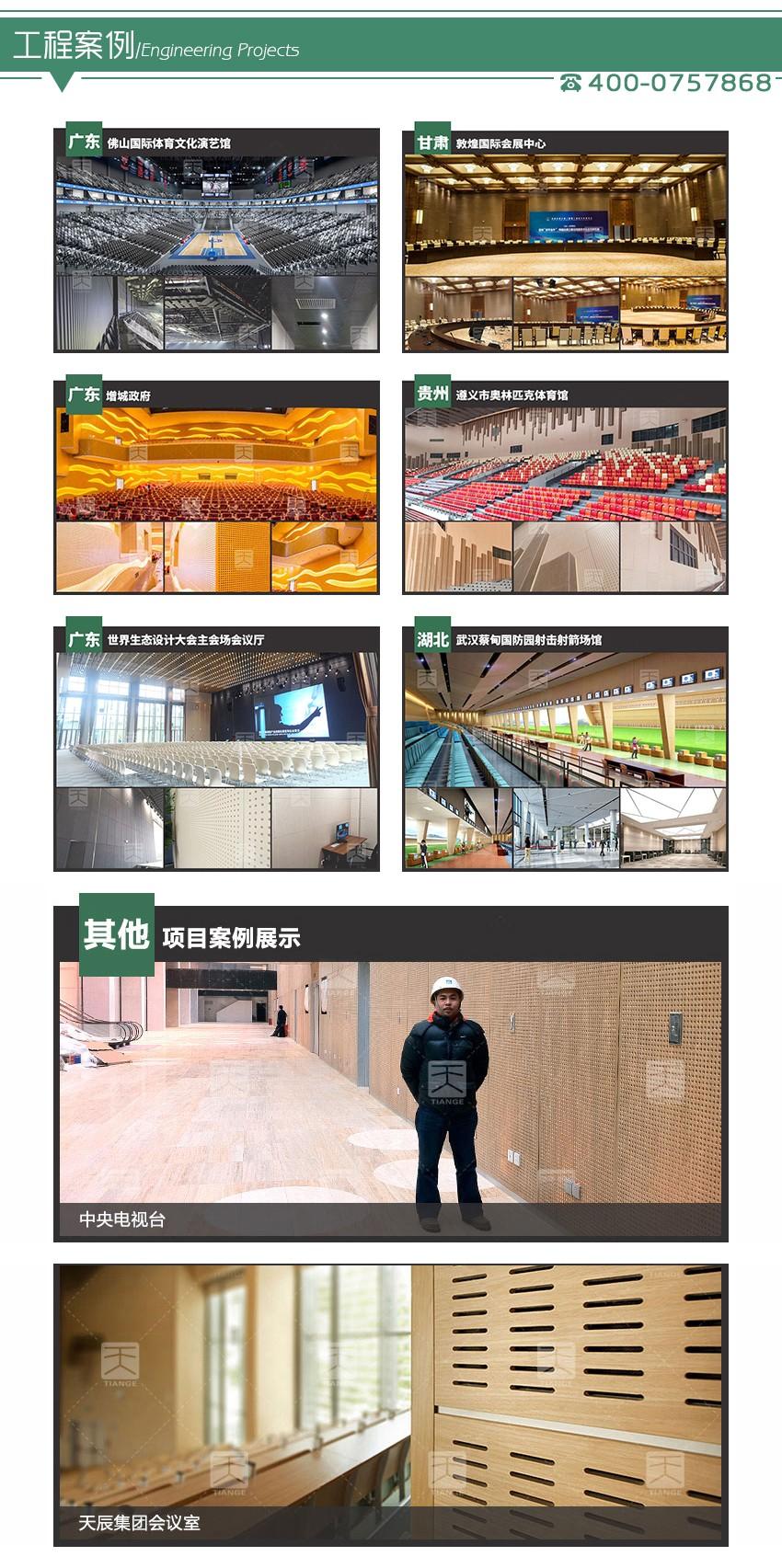 音乐厅孔木吸  音板工程案例
